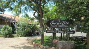 ChocolaTree Organic and Vegetarian - Sedona