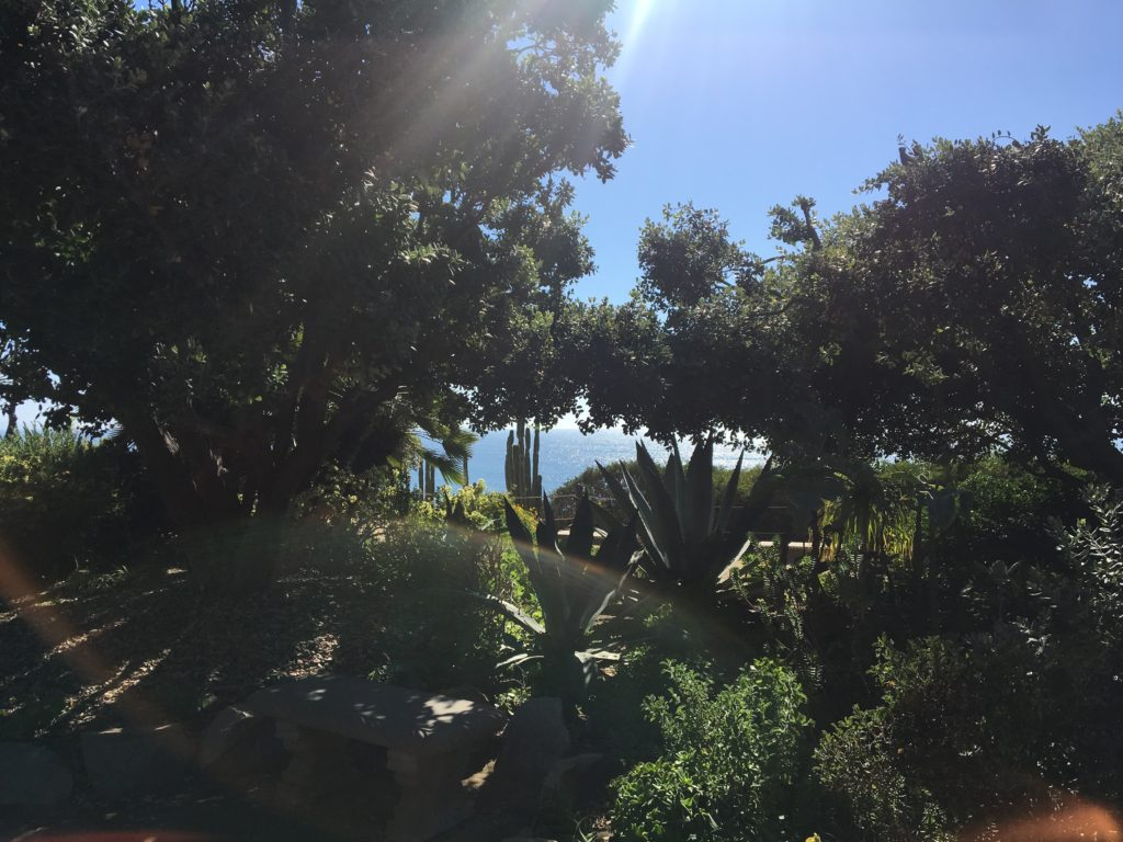 Meditation Garden at SRC - Encinitas