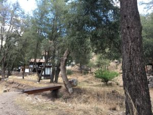Zen Mountain Center - Idyllwild - Country Living