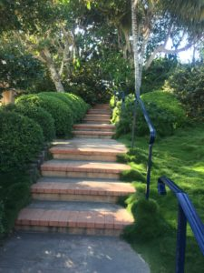 Stairs to Meditation Garden - SRF - Encinitas
